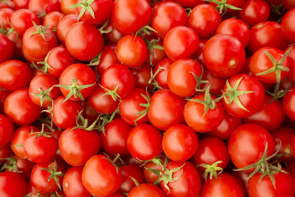 El sector del tomate está de enhorabuena