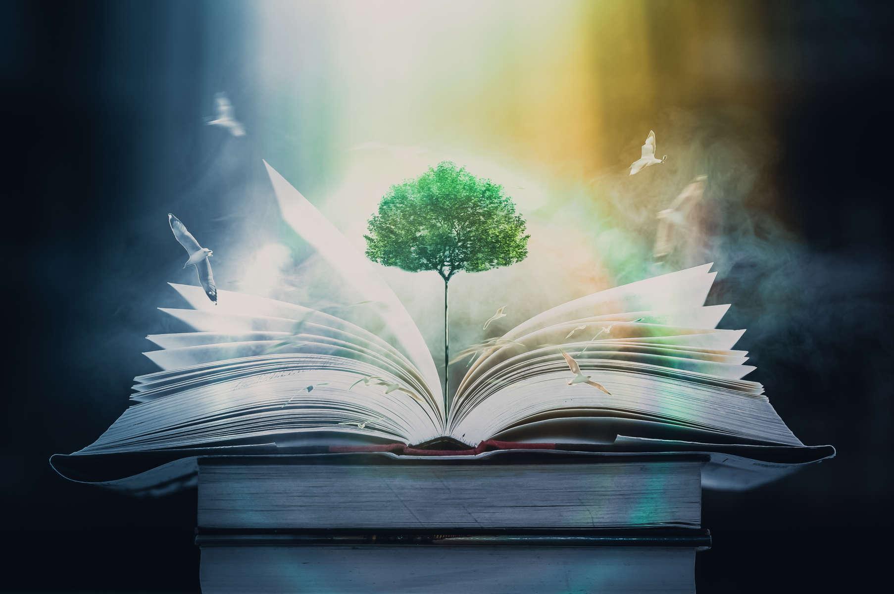 La literatura, un buen medio para concienciar a las empresas sobre la necesidad de apostar por el cuidado del medio ambiente